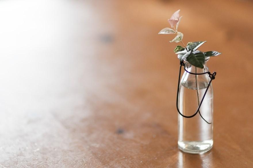 テーブル, 小さい, 花, 花瓶 が含まれている画像  自動的に生成された説明